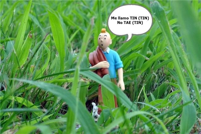 diferencia entre TIN y TAE crédito online