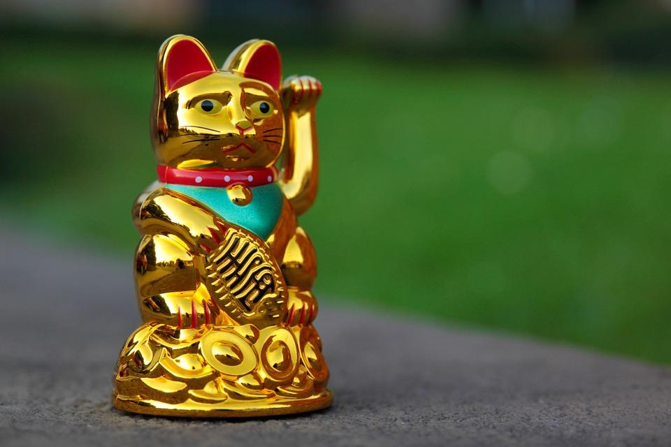 gato de la surte chino